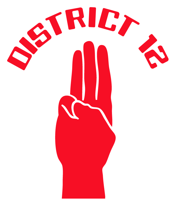 District 12 Sticker X11 Colours Hunger Games Movie Katniss Peeta